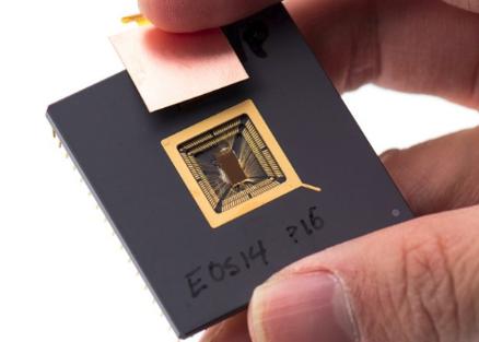 开源代码硬件RISC-V估计到2025年会有62...