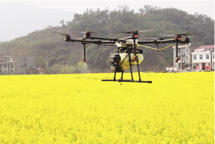 无人机用于油菜病虫害防治作业中的应用介绍