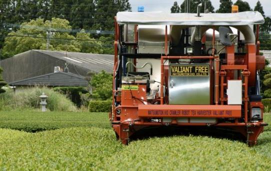 日本面向农业采茶推出了基于AI技术的无人采茶机