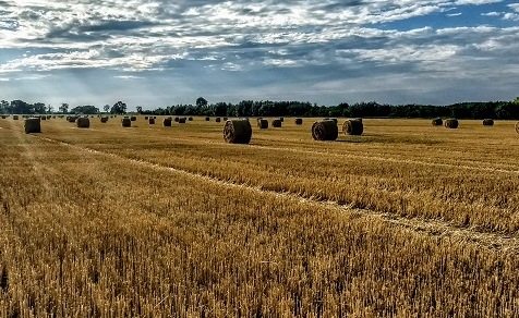 物联网技术在农业中的应用介绍