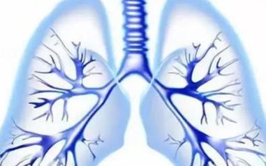 研究表明可使用超声波技术来测量肺部的液体