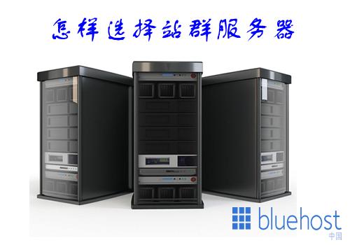 怎样选择比较合适的bluehost美国站群服务器