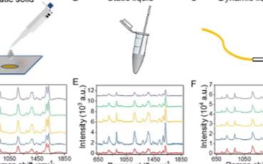 基于微流控技术的表面增强拉曼在医疗领域的应用