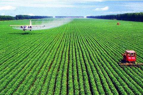 农业物联网在蓝莓种植的领域的第一步