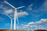 浙江运达风电发布年度业绩报告 营收同比增长51.29%