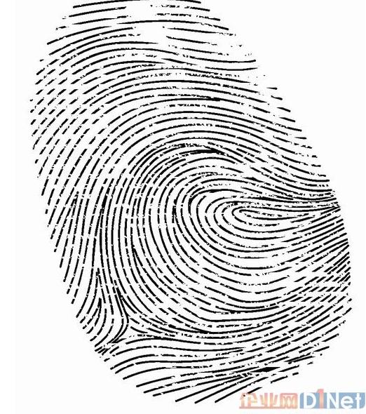 指紋識別如何顛覆信息安全