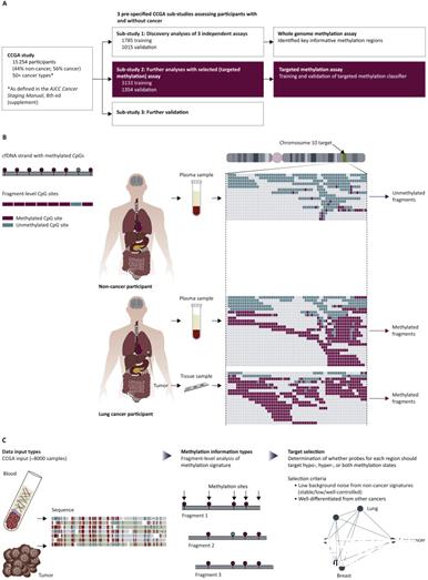 國外研xin)jiu)人員(yuan)開發出(chu)一種(zhong)新型AI血(xue)液測試 可準確檢測出(chu)50多種(zhong)不同類型的癌癥
