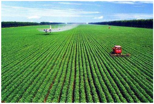 物联网可以让农业具备怎样的智慧