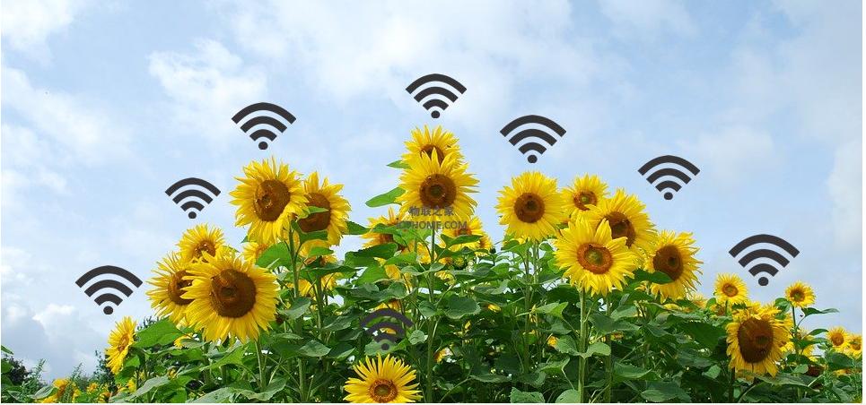 智慧農業監測方案如何來優化