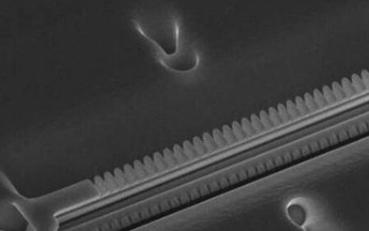 光腔中的原子可能将是创建量子互联网的基础