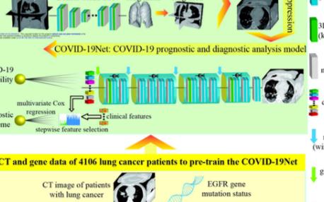全自动机器学习系统诊断COVID-19,无需人工...