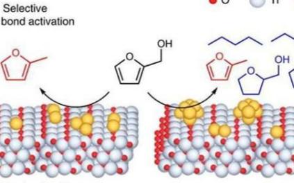 选择性表面改性催化剂可提升生物质的生产量