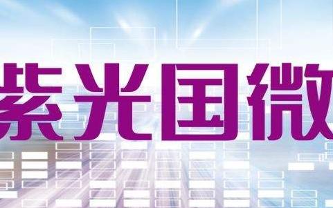 紫光国微在中国的地位最具潜力的安全芯片领导者