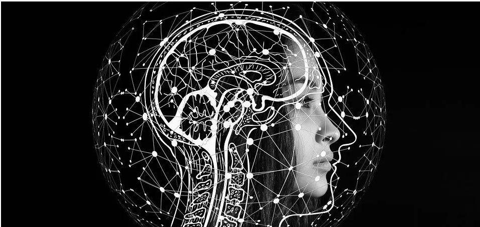 众包式学习人工智能是怎样的