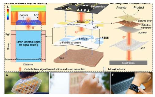 美國(guo)研究人員(yuan)開發出了一種獨立式的電化(hua)學傳感系統FESS