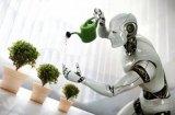 人工智能的使用已进入一个新时代