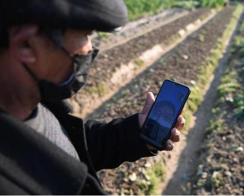 江西省吉水县为农业领域引进了智能工厂化育秧设备