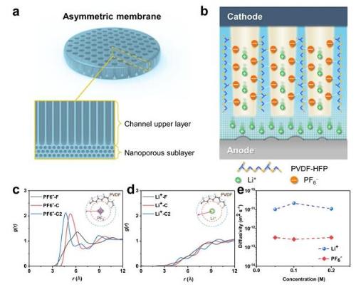 非对称凝胶聚合物电解质膜,可促进锂离子传输和均匀沉积