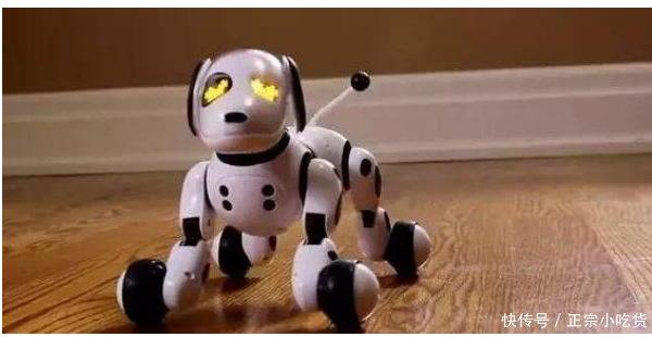 机器人可以消除老人的孤独感吗