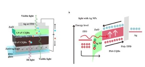 新型量子点红外上转换器件,可应用于生物医学成像领域