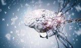 Google宣布了一项新的beta机器学习服务,称为文档理解AI