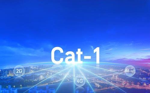 """十二大應用引爆Cat.1,物聯網""""新貴""""誕生!"""