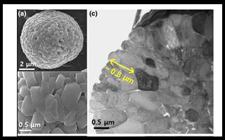 新型富镍层状LiMO2正极提升电池能量密度