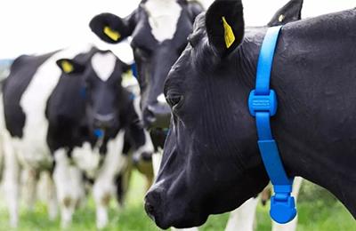 MEMS技术在智慧农业中的应用