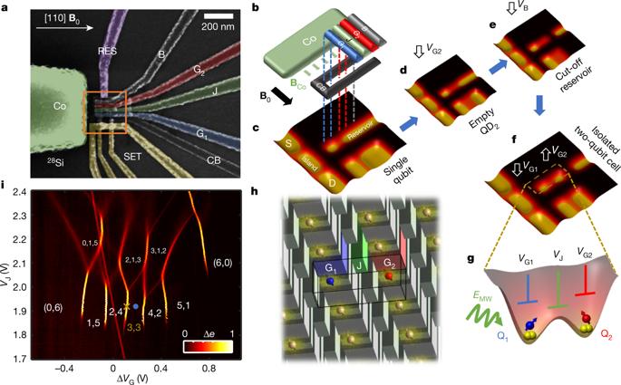 研究人员成功将量子计算平台运行温度提至1开尔文以上 将有利于集成利用现有硅基硬件的经典系统