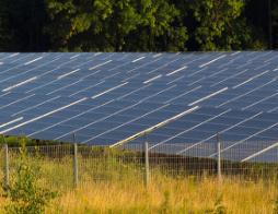 2020年Q1季度我國能源需求下降,工業能源消費...