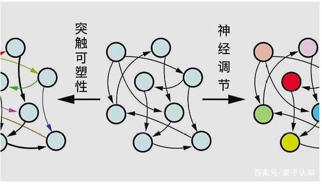 人工智能新鲜算法是如何的