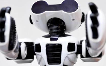 機器人團隊完成了Wikipedia機器人的首次普...