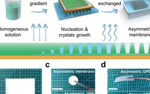 蘇州納米所研發新非對稱凝膠電解質助力無枝晶金屬鋰...