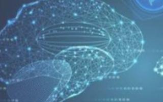 西奈山伊坎医学院的研究人员开发了一种AI平台