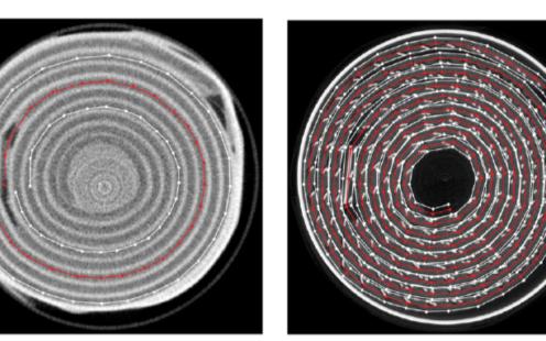 一種可全面追蹤鋰電池微觀工作過程的新方法