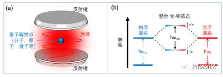 纳米尺度下的光和物质强耦合系统的研究