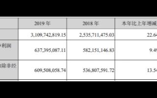 2019年我國光伏產業規模持續擴大,晶盛機電實現...