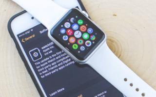 苹果可穿戴产品类别将超过Mac和iPad