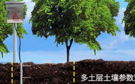 桑园种植环境监测系统