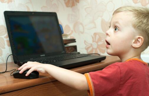 电脑花屏后开不了机怎么办_电脑花屏死机什么原因