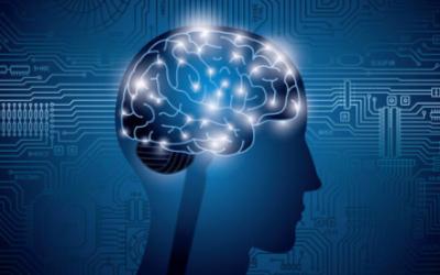 将AI融入零售市场可以同步数字和实体购物流