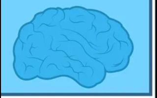 通用AI与窄AI之间有何不同?