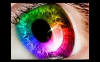 一种直接将皮肤细胞重新编程成用于视觉的光敏杆状感光器的技术!