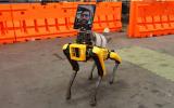 快讯:波士顿动力机器狗正在帮助新冠患者