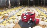 国外推出了两款禽舍机器人