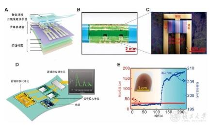复旦大学利用柔性薄膜组装集成芯片传感器,实现多环...