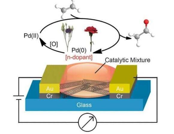 化学家们发明了一种微型传感器,可以检测乙烯气体