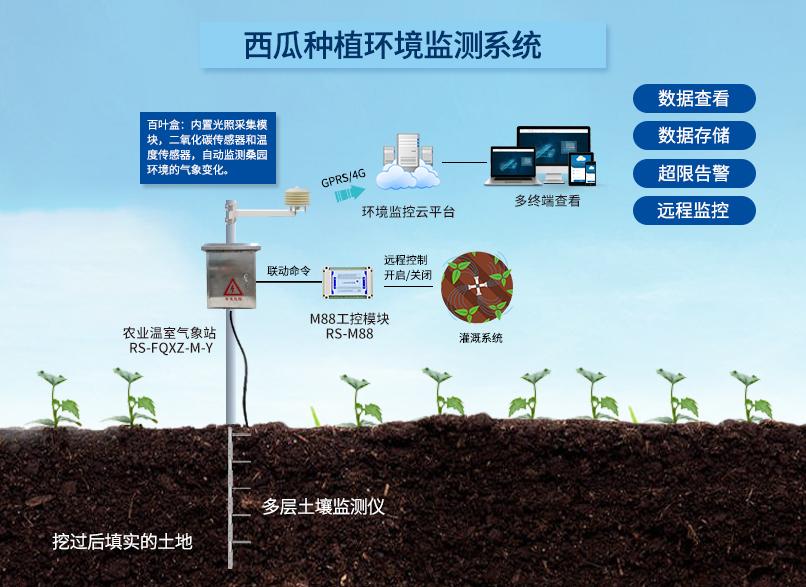 智慧农业解决方案:西瓜种植环境监测系统