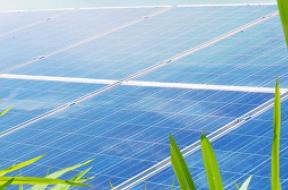 雷普索尔进军光伏行业,建设126兆瓦太阳能发电厂