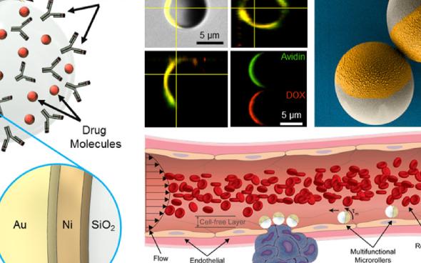 科学家最新研发了一款可携带药物进入血管的微型机器...